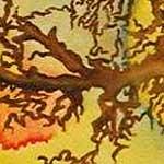 """""""Sacred Oak: A Prayer for the World at War"""", 2002 <div id=""""copy"""">© Linda Vallejo</div>"""
