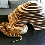 "<strong>Darrell McKelvie Ruppel</strong>   <em>Prototype #1 Izzy's Snake Dome</em>, 8""x8""x11"" Lasercut Mahogany"