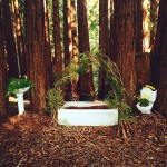<strong>Kayla Kemper</strong>   <em>Forest Bathing Interactive Sculpture</em>, Sink, Toilet, Bathtub, Flowers, Branches & Woodchips