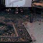 """(Re)(Un)(Dis)Covering America: Curiositas"",installation, 1990<div id=""copy"">© Amalia Mesa-Bains</div>"