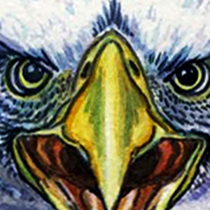 "<b>Guillermo Aranda</b> <i>Eagle Vision</i>, watercolor, 8"" x 15"", 2009"